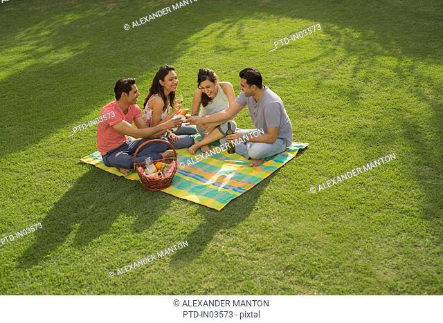 Four friends having picnic