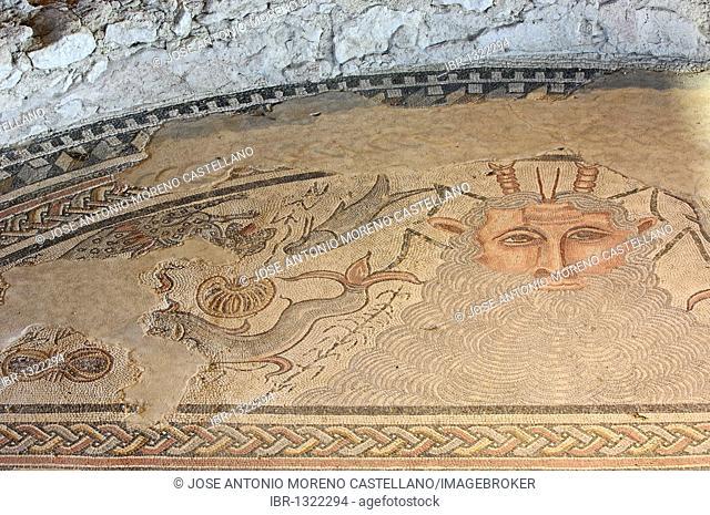 Mosaic at Carranque Roman Archaeological Park, Toledo province, Castile-La Mancha, Spain, Europe