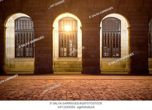 Columns of the facade of the City of Santiago de Compostela, A Coruña, Galicia, Spain