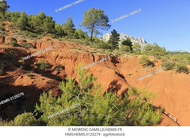 France, Bouches du Rhone, Pays d'Aix, Sainte Victoire Site, Beaurecueil, Terres Rouges, road Cezanne, mountain Sainte Victoire in the background