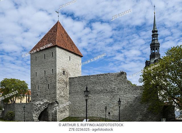 Maiden's Tower (Neitsitorn), Tallinn's City Walls, Old Town, Tallinn, Estonia, Baltic States