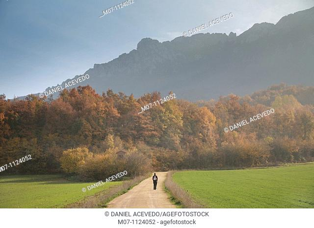 Walking by Cantabria range mountains, Alava, Basque Country, Spain