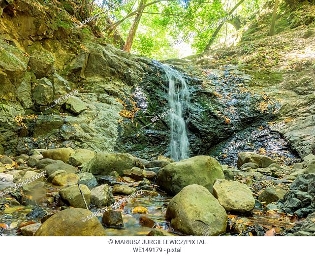Uvas Canyon County Park is natural park is located in upper Uvas Canyon on the eastern side of the Santa Cruz Mountains, west of Morgan Hill, California