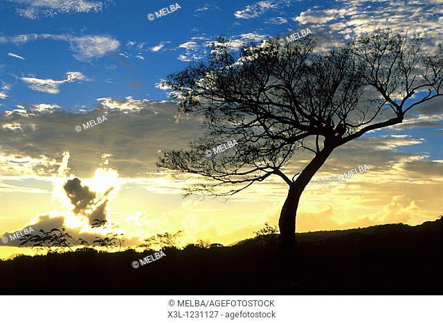 Rincón de la Vieja National Park Guanacaste Costa Rica