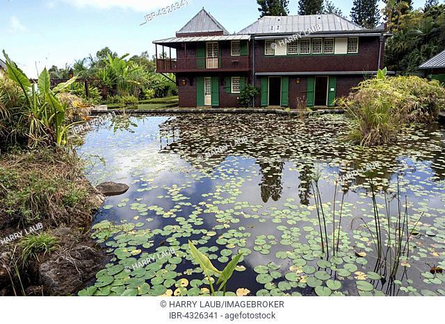 Water lily pond in the Conservatoire Botanique National de Mascarin, botanical garden Jardin de Mascarin, Saint-Leu, Reunion, France