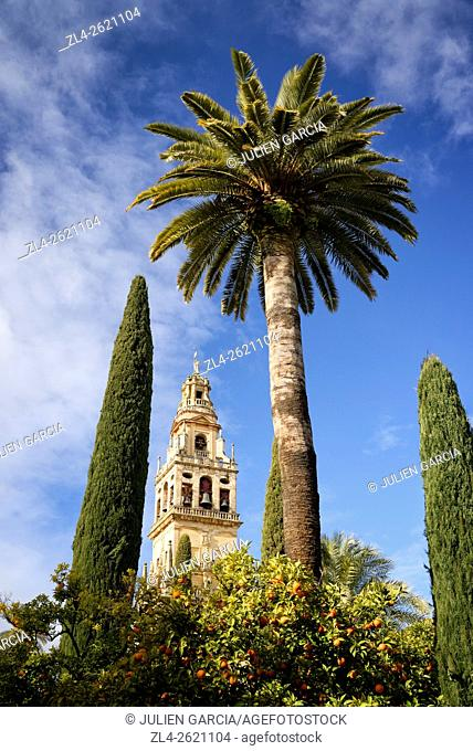 Spain, Andalusia (Andalucia), Cordoba, historic centre listed as World Heritage by UNESCO, the bell tower of the Mosque Cathedral (Mezquita) seen from the...
