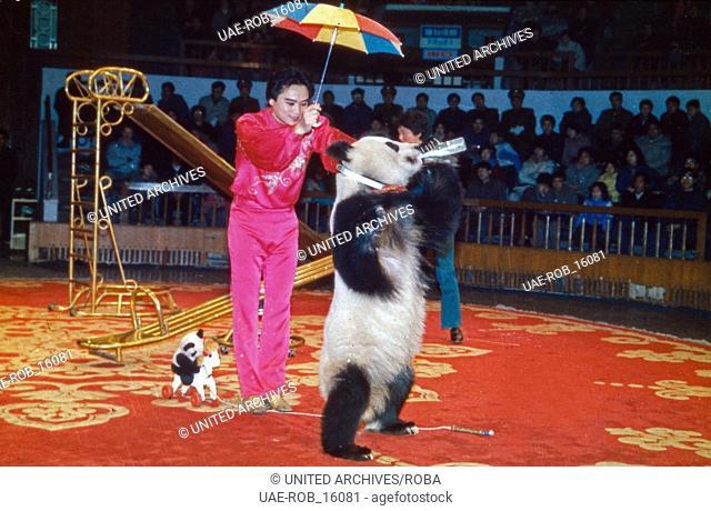 Die Akrobatentruppe bei einer Zirkusaufführung in Shanghai, China 1960er Jahre. Shanghai acrobatic troup performing at a circus, China 1960s