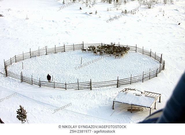 Small peoples of the Russian North. Yamal-Nenets Autonomous District. Herders camp. North habitation of shepherds deer herd. Nenets reindeer herders