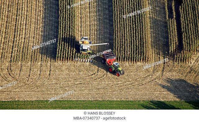 Aerial view, B63, Ossenbeck, corn harvest, Claas, tractor, combine harvester north of the County road, Drensteinfurt, Drensteinfurt, Ruhr area