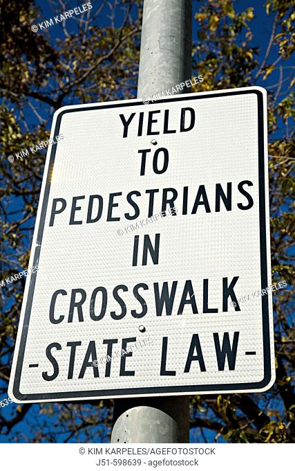 TEXAS  Austin   Yield to Pedestrians in Crosswalk State Law warning sign on street post