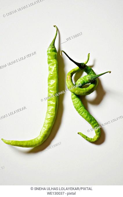 Common Chilies, Capsicum annuum Poona, Maharashtra, India