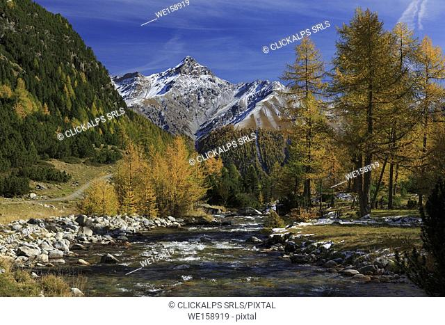 View on Val Susauna valley in autumn with Piz d'Esan in the background, Val Susauna, S-Chanf, Canton Grisons, Engadin, Switzerland