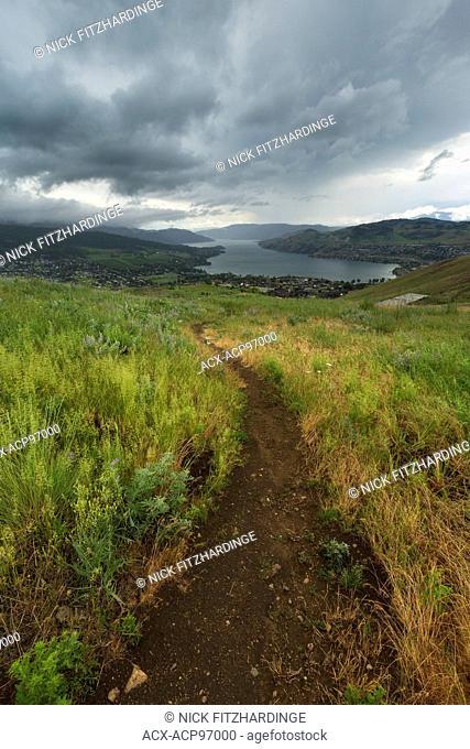 Pathway through the grass on Middleton Mountain, North Okanagan Valley, British Columbia, Canada