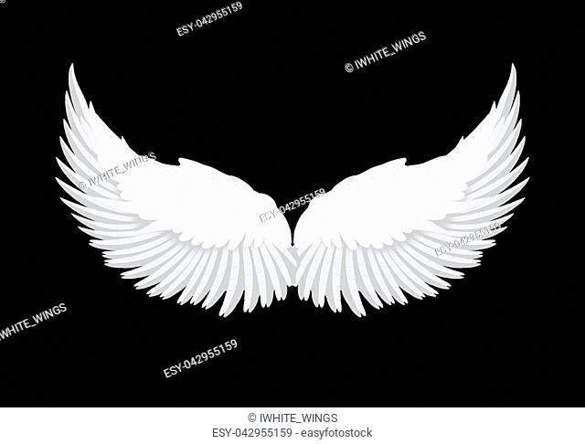 Realistic elegant white angel wings on black background. Love, lightness, romantic, innocence and freedom symbol. Vector illustration