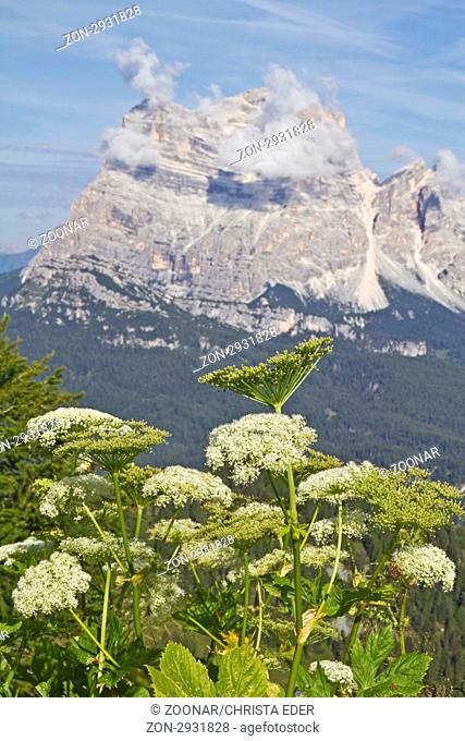 Blick vom Monte Rite
