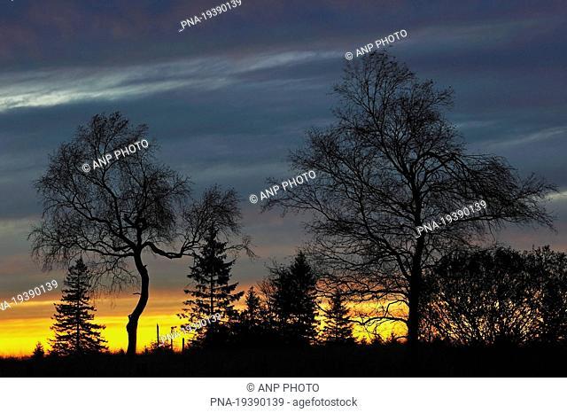 Natural Park Hautes Fagnes, Baraque Michel, Eifel, Liege, Wallonia, Belgium, Europe
