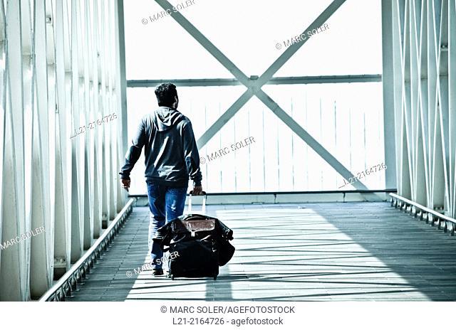 Solo traveler, one. Man back dragging his wheeled suitcase on a walkway, catwalk, gangway. Airport, El Prat de Llobregat, Barcelona, Catalonia, Spain