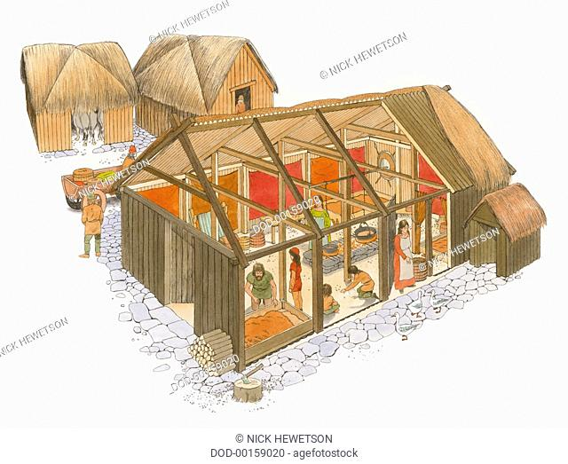 Sectioned view of Viking House with Occupants