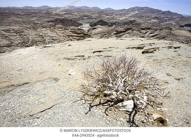 Desolated scenery viewed from Kuiseb Pass, Namibia