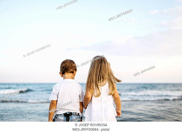 Back view of little boy and girl standing side by side in front of the sea