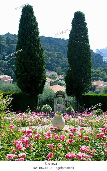 Italian cypress Cupressus sempervirens, garden of the Villa Ephrussi de Rothschild with stone sculptures and a pavillon enframed by cypresses, France