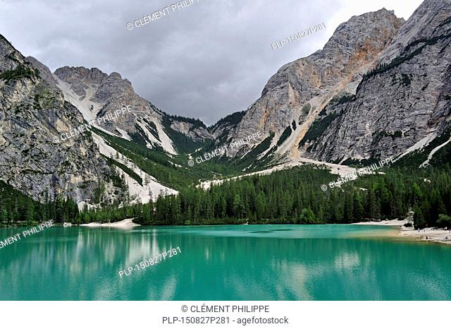 Turquoise water of the lake Lago di Braies / Pragser Wildsee surrounded by pine forest and mountains in the Prags Dolomites in South Tyrol, Italy