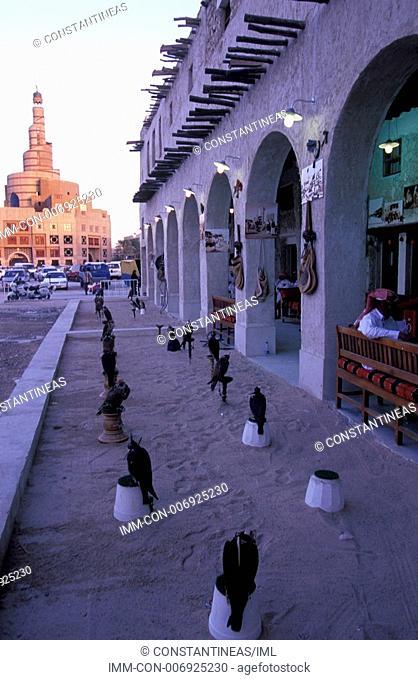 Souq Waqif, Bird Center Shop, falcons for sale, Doha, Qatar, Middle East