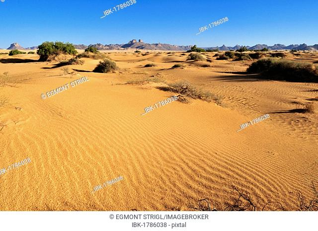 Small sand dunes in a wadi of Erg Admer, Wilaya Illizi, Algeria, Sahara, North Africa