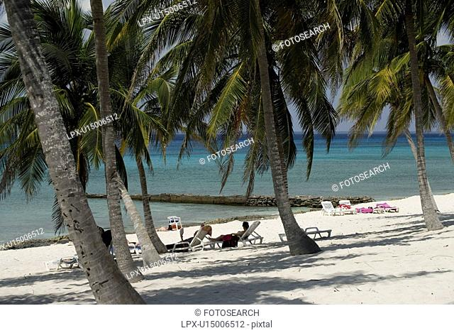 Palm trees and small pier off beach, Maria La Gorda, Cuba, Caribbean