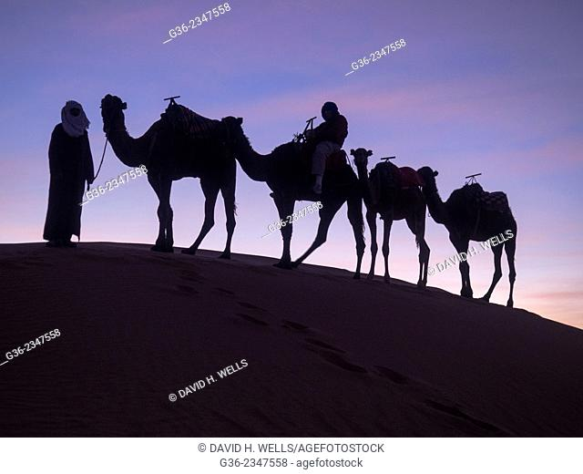 Silhouette of tourist riding camel at desert in Erg Chebbi, Morocco