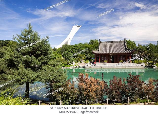 The Friendship Hall pavilion and the Dream Lake in summer at the Chinese Garden. The Olympic Stadium Tower is visible in the background