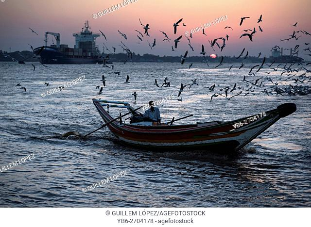 A long boat surrounded by a flock of birds at the Irrawaddy River at sunset, Yangon, Myanmar