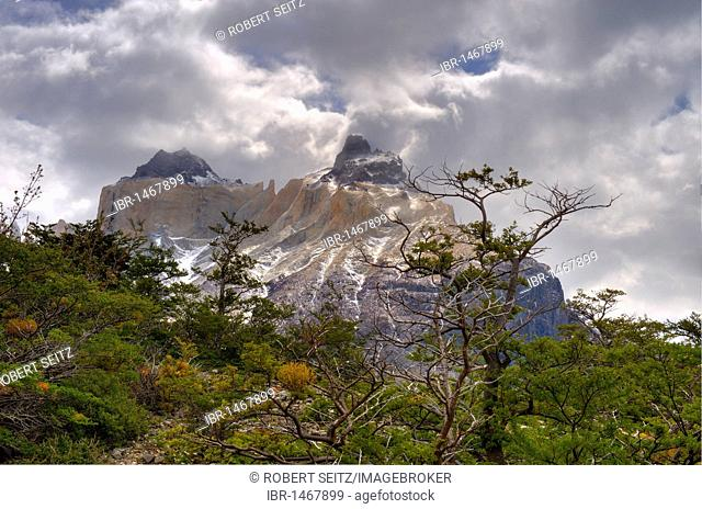 Torres del Paine Massif, Patagonia, Chile, South America