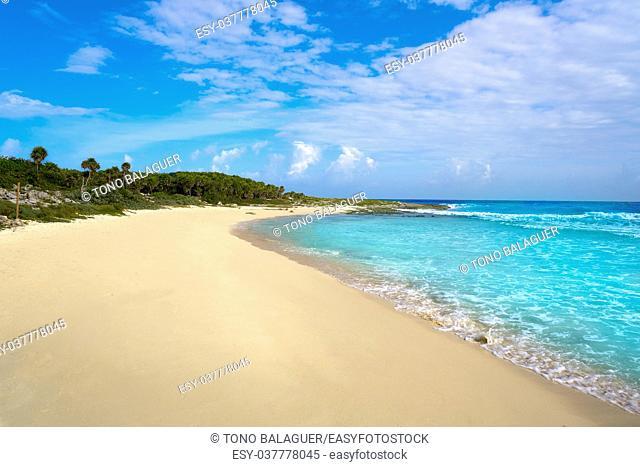 Cozumel island Bush beach in Riviera Maya of Mayan Mexico