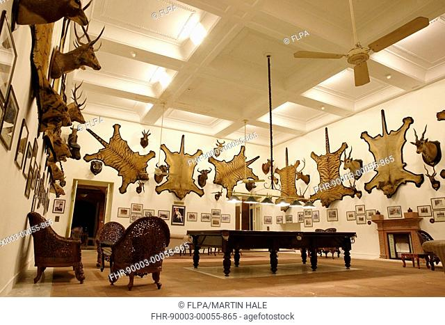 Hunting trophy room with tiger skins, lion skins and mounted deer and antelope heads on walls, The Trophy Room, Laxmi Niwas Palace, Bikaner, Thar Desert