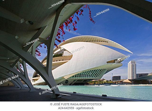 The City of Arts and Science built by Calatrava. Valencia. Spain. May 2007