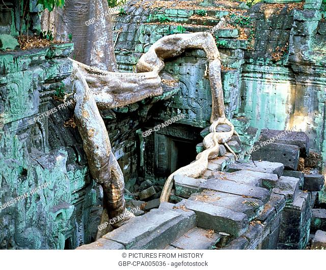 Cambodia: Ta Prohm with its famous trees growing over the ruins, Angkor
