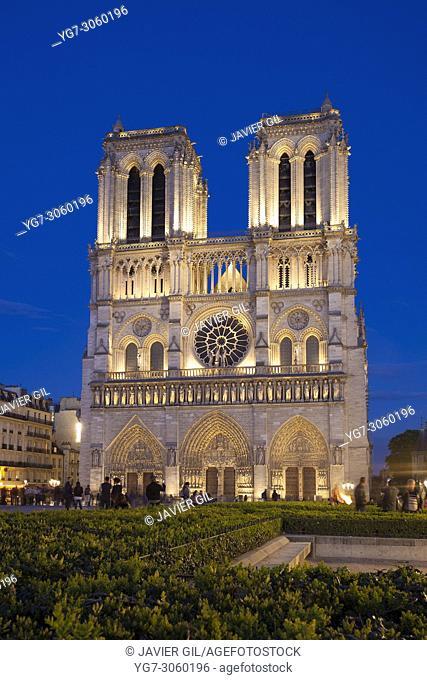 Nightfall in Notre Dame, Paris, Ile-de-france, France