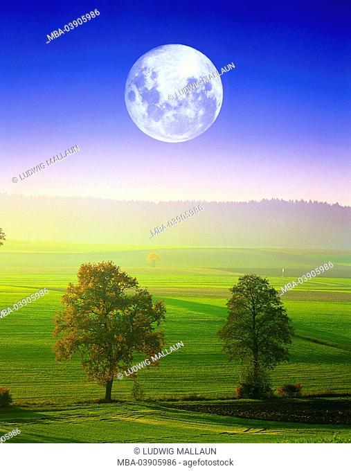 Germany, Upper Bavaria, Traunstein, field-landscape, fog, full moon, M, Bavaria, landscape, fields, meadows, morning-mood, morning-fog, mist, time of day