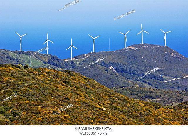 Wind turbines on cliff above sea, Tarifa, Andalusia, Spain