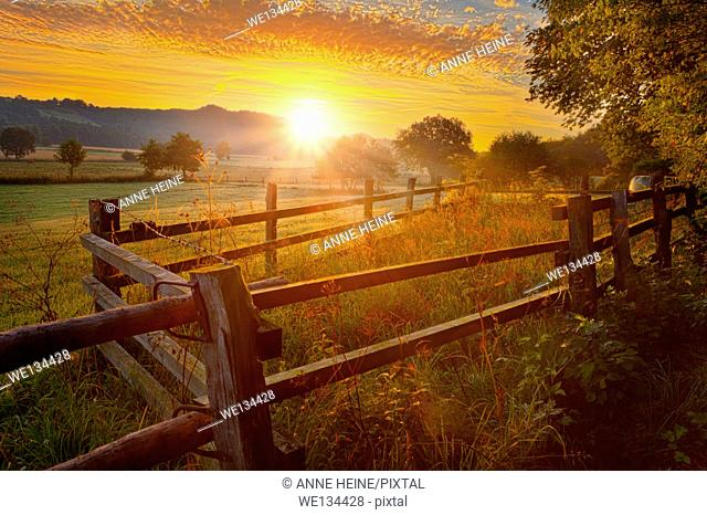 sun rising above haarstrang, shining into foggy moehnetal, fence in foreground, location: warstein-belecke, sauerland, germany