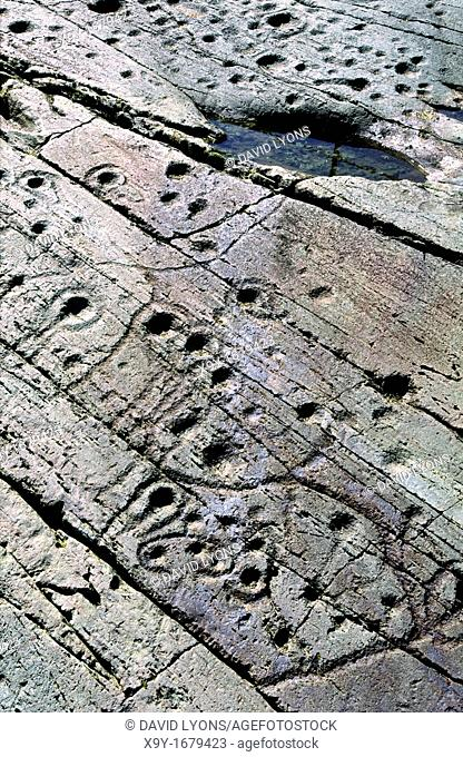 Prehistoric cup and ring mark carved stone rock art outcrop at Kilmichael Glassary, Kilmartin Valley, Argyll, west Scotland, UK