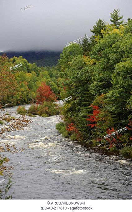 Swift River, White Mountains, New Hampshire, USA, Indian Summer