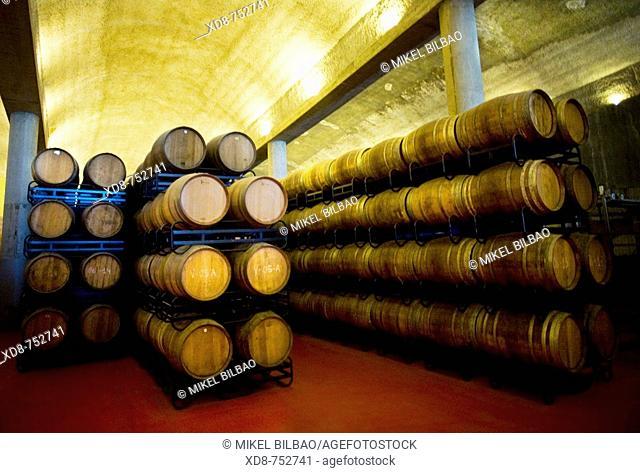 wine cellar with barrels Heredad de Ugarte wine cellar, Laguardia, Alava, Alavese Rioja, Basque Country, Spain, Europe