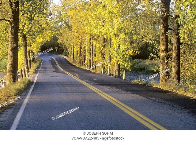 A two lane road crosses the New York-Vermont border surrounded by autumn trees