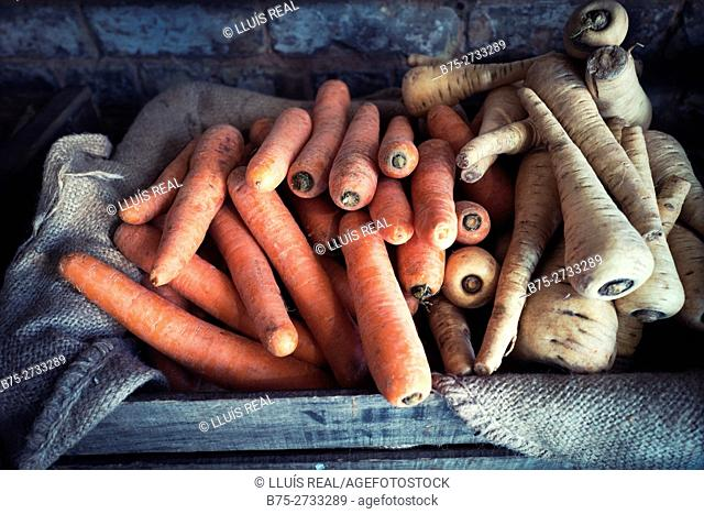 Organic carrots and turnips