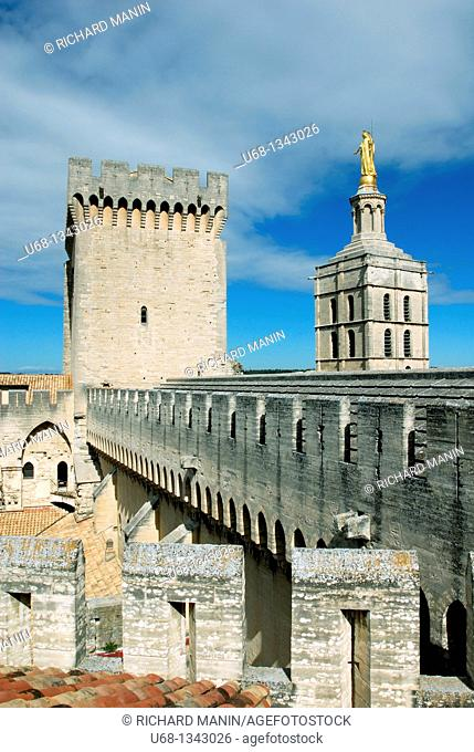 France, Vaucluse, Avignon, Palais des Papes, the Pope's Palace The work carried out in the 'Old Palace' by Benedict XII started in 1335 with the building of a...