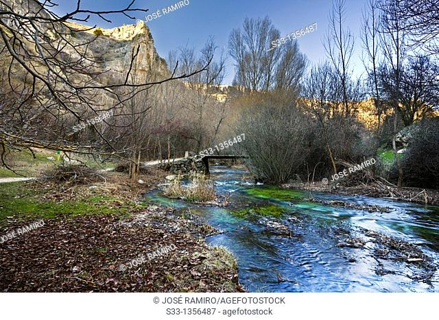 The Dulce riverbank in Pelegrina  Guadalajara  Castilla la Mancha  Spain