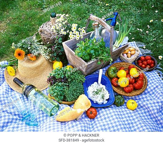 Picnic with herbs and tomatoes