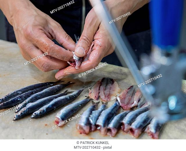 Close-up of man cleaning anchovy fish